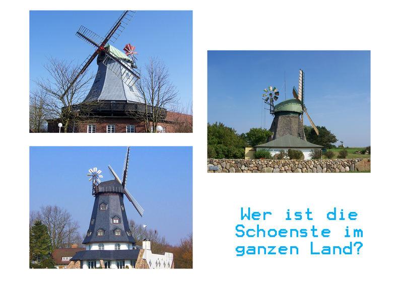 Mühlen in Schleswig- Holstein