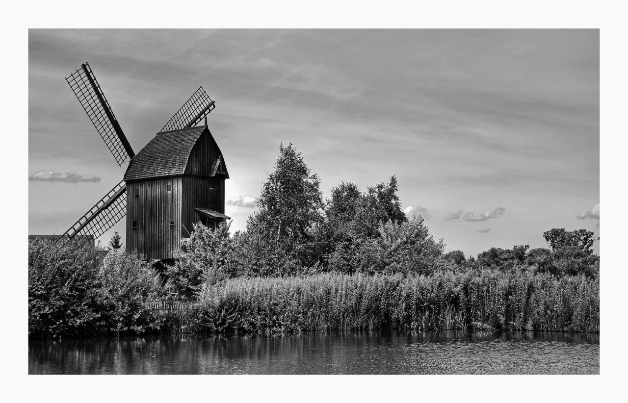 """Mühlenmuseum - Gifhorn """" Blick auf die Bockwindmühle"""