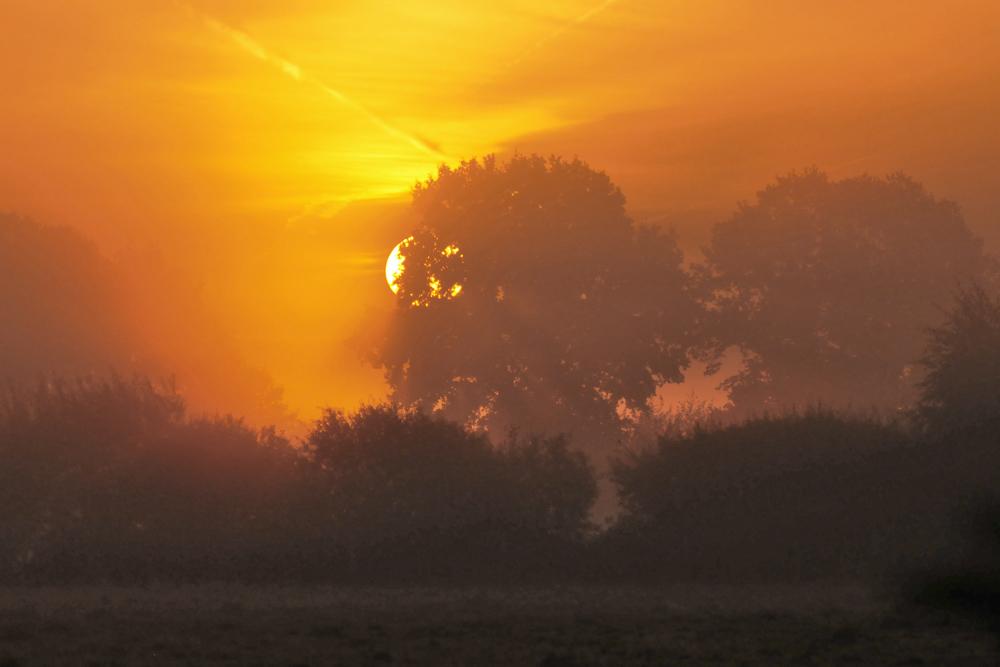 Mühsam kämpft sich die Sonne ...