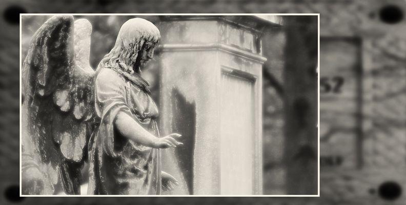 München Südfriedhof #06