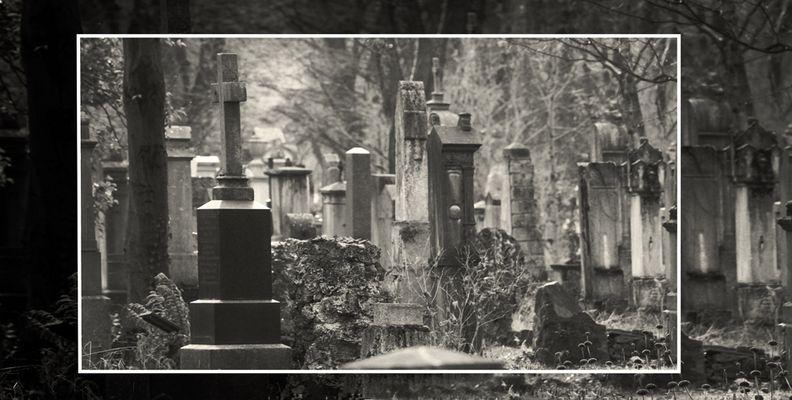 München Südfriedhof #09