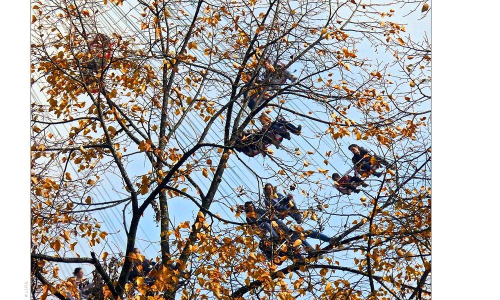 Münchner Herbst [05]