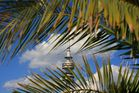 Münchner Olympiaturm - aus Großstadtdschungel-Perspektive