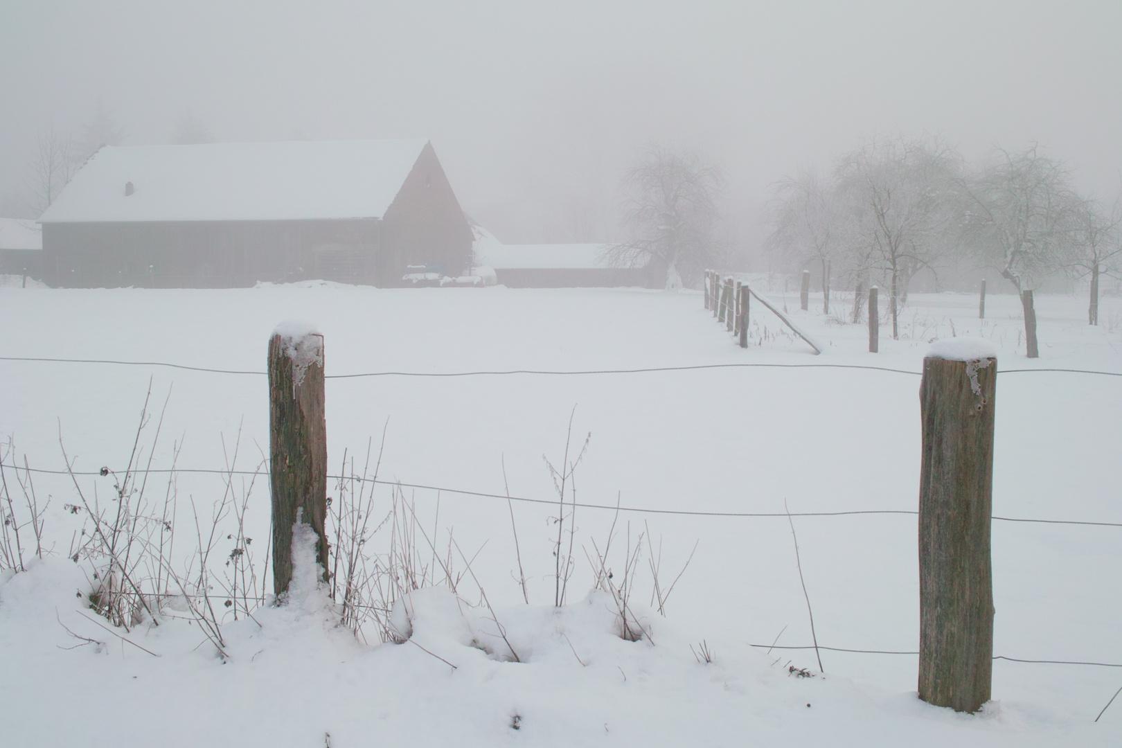 Münster-Mecklenbeck im Schnee