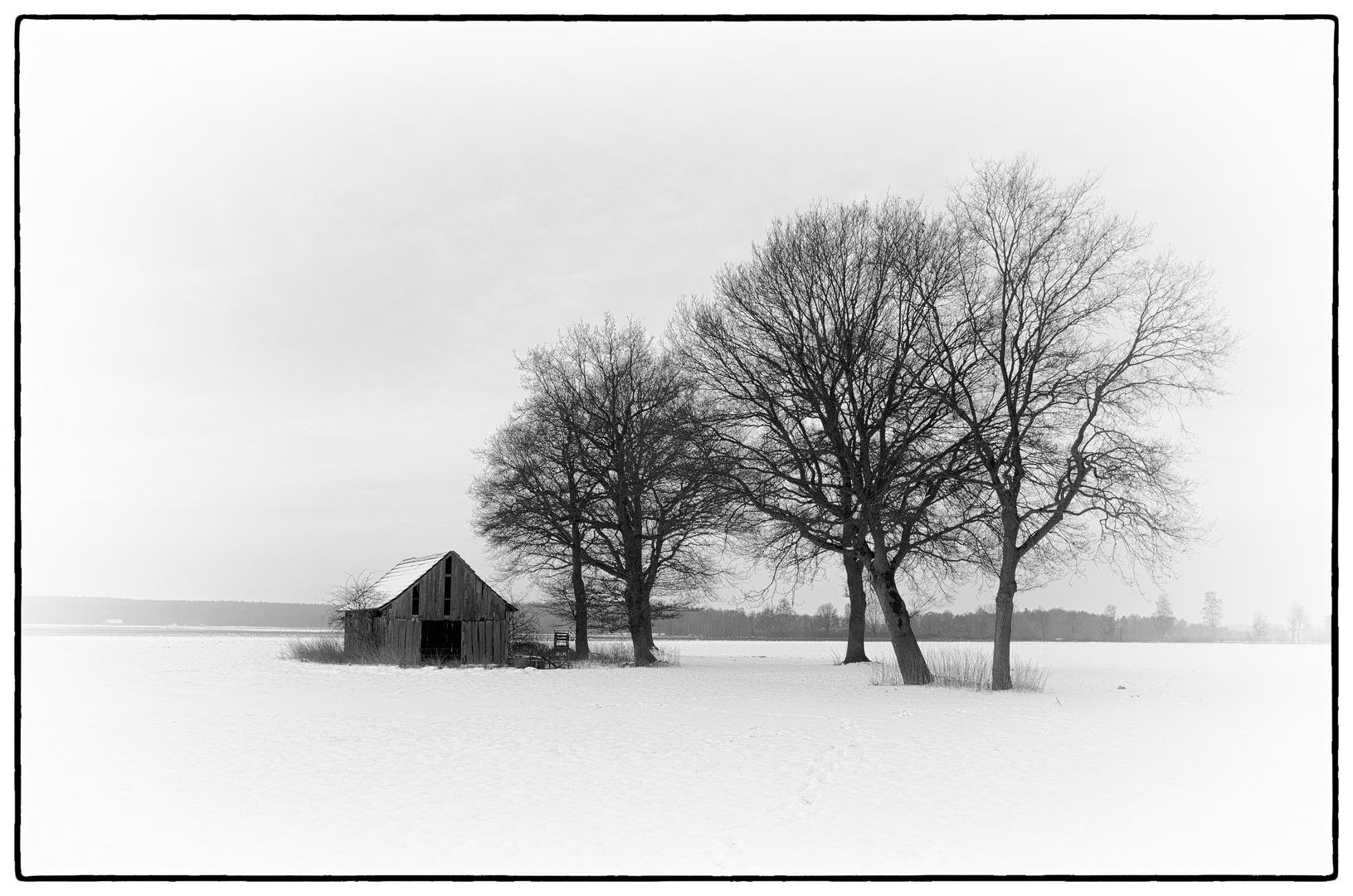 Münsterland im Schnee