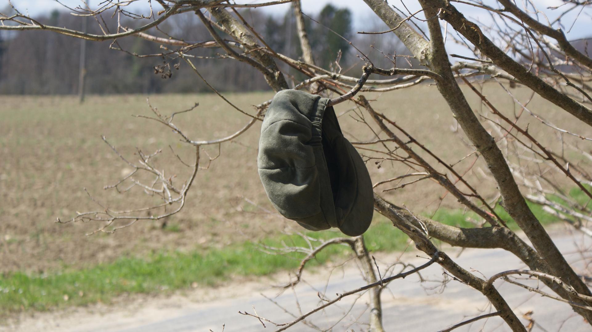 Mütze im Busch