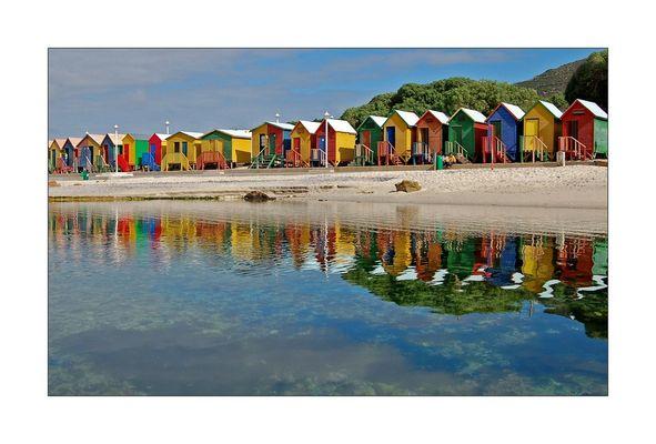 Multicolores...
