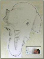 Mumak l'elefante bianco