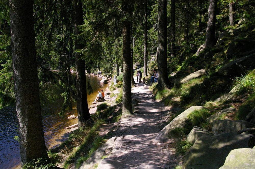 Mummelsee (2). Der Rundweg