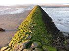 Mur au bord de la mer