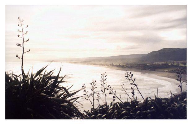 Muriwai Beach, Auckland