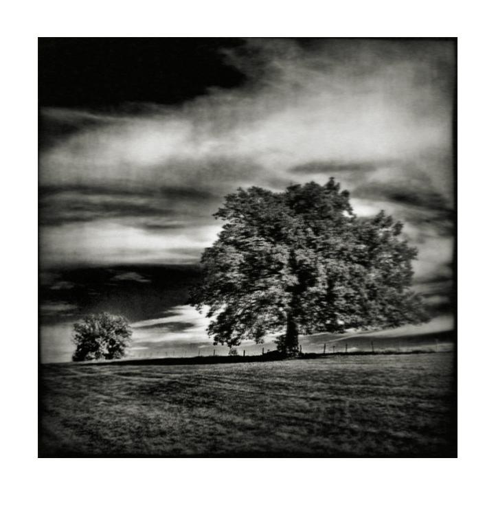 Murnau # 9