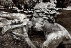 Muschelhorn blasender Triton