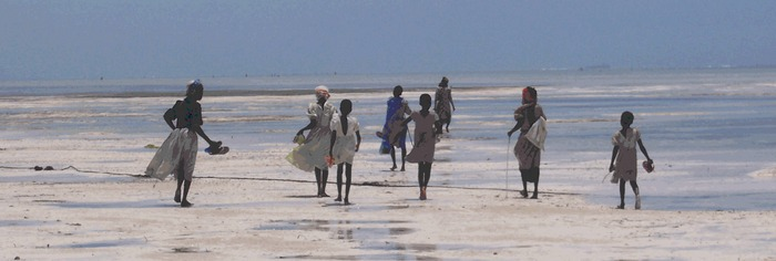 Muschelsuchende Mädchen auf Sansibar