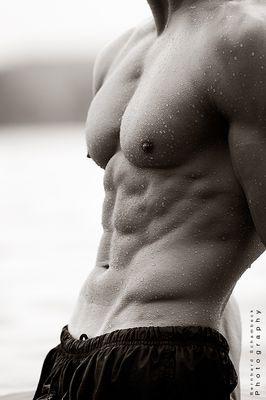 muscle landscape
