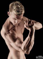 ... musculus biceps brachii ...