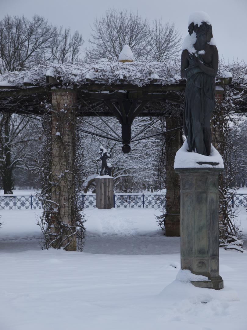 Muse im Schnee
