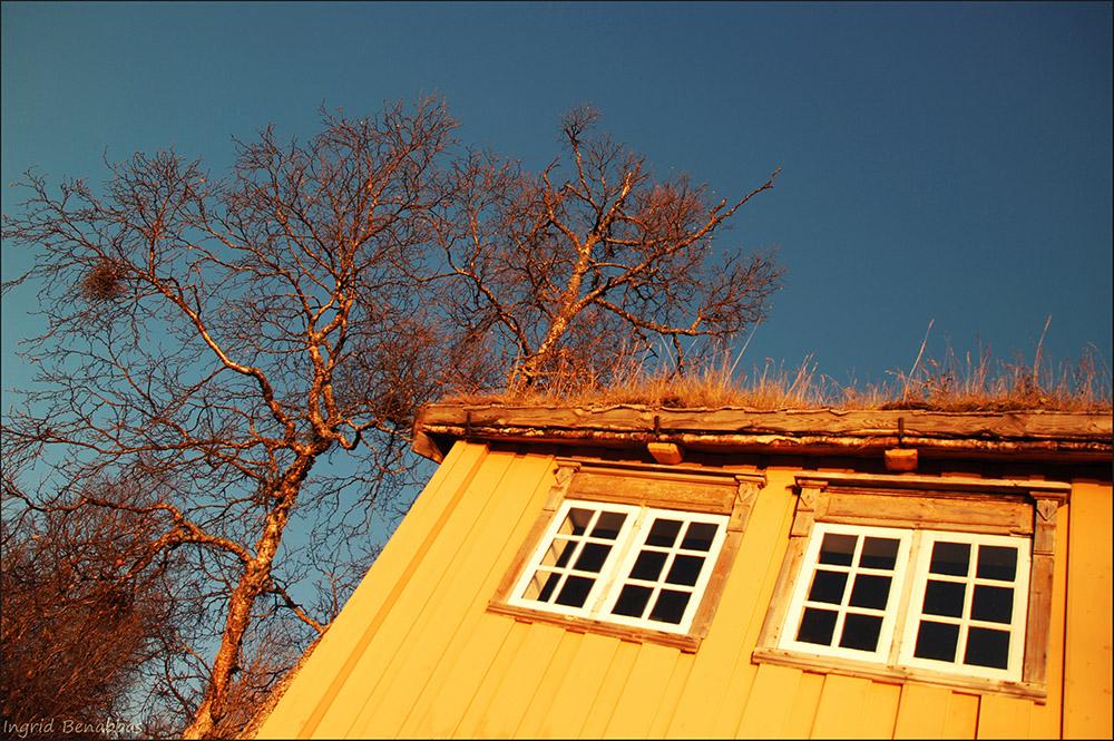 Museumsdorf Tromsø