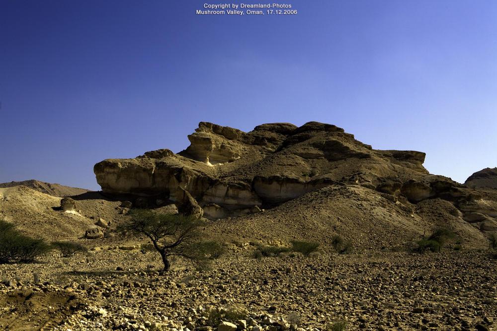 Mushroom Valley in der Steinwüste zwischen Al-Mazari und Al Asfar, Oman 2006