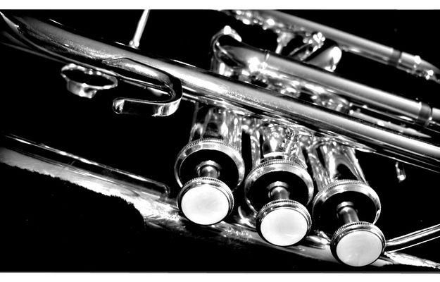 Musik ist eines der größten Mittel, das Herz zu bewegen und Empfindungen zu erregen.