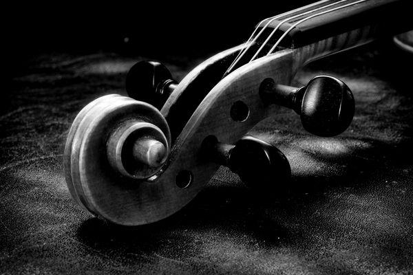 Musikalische Linien