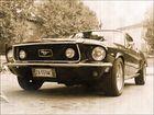 Mustang...