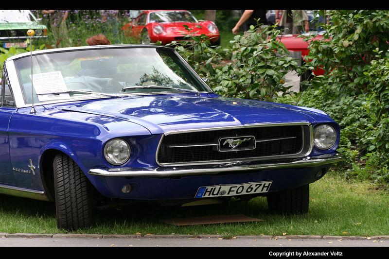 ~Mustang~