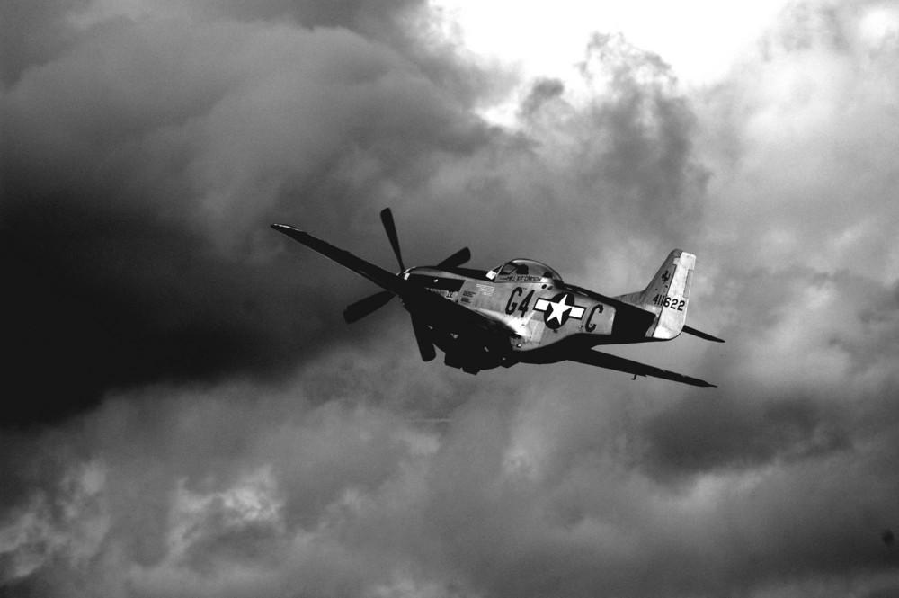 Mustang en vol à nouveau