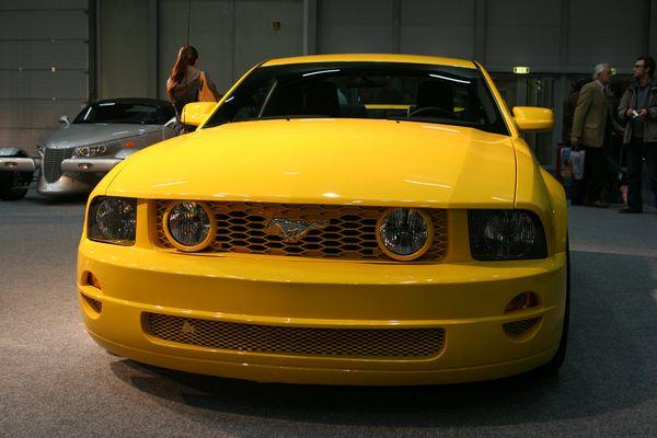 __Mustang__