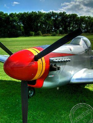 Mustang P51 UL II