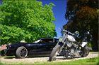 Mustang vs. Harley Davidson