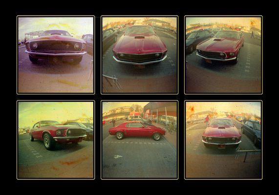 Mustang_Sixpack