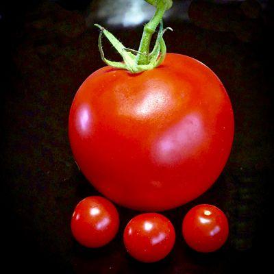 Mutter Tomate hat Drillinge