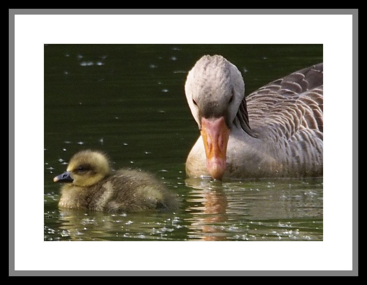 Mutter und Tochter???