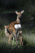 Mutti und Bambi