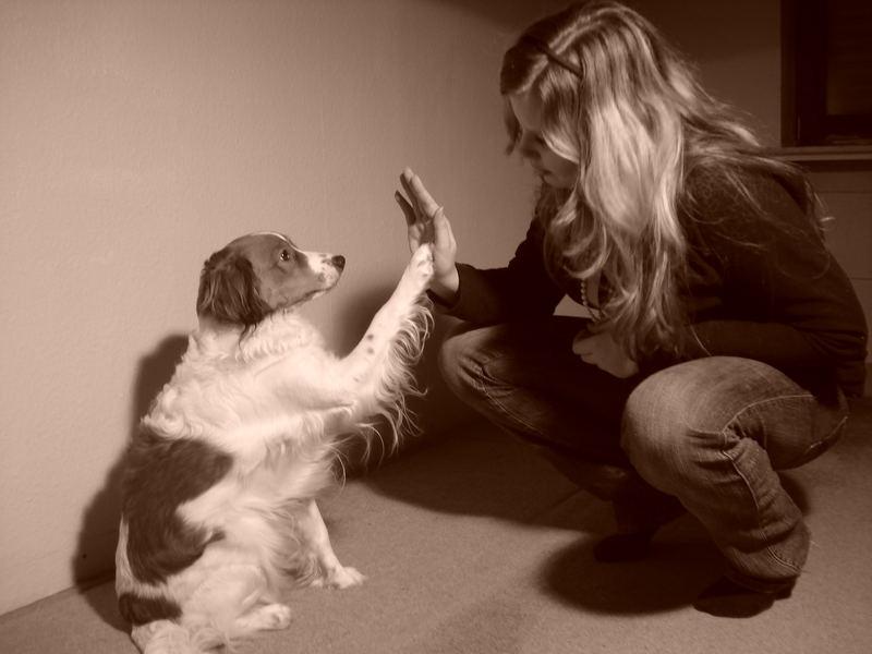 My Dog & Me (in love)