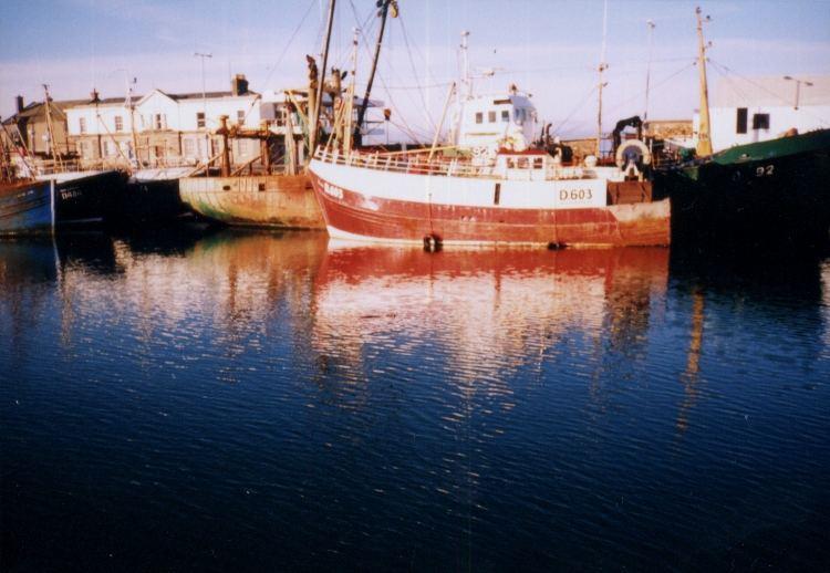 ...........my Irish shores.........