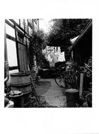 my lovely halberstadt 5 von 6