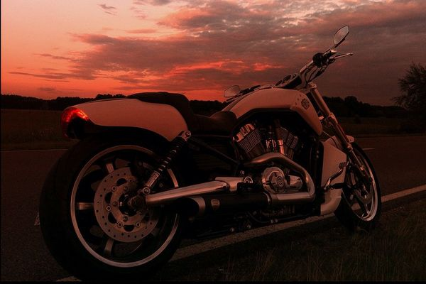 my V-ROD Muscle white hot denim @sundowner
