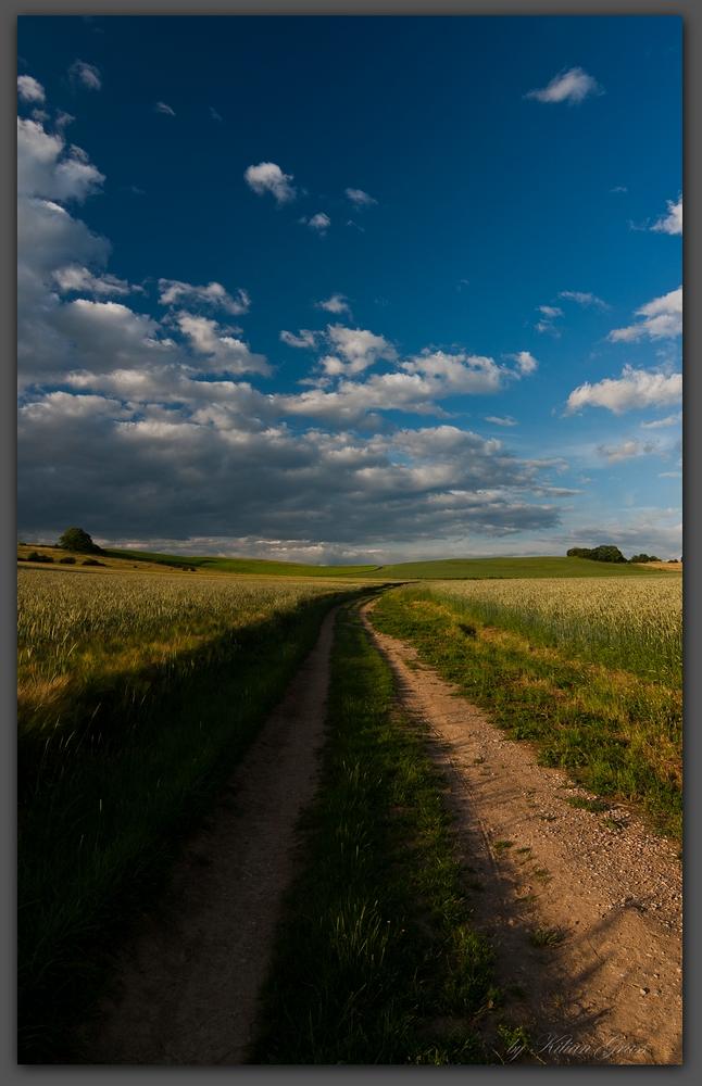My Way.....