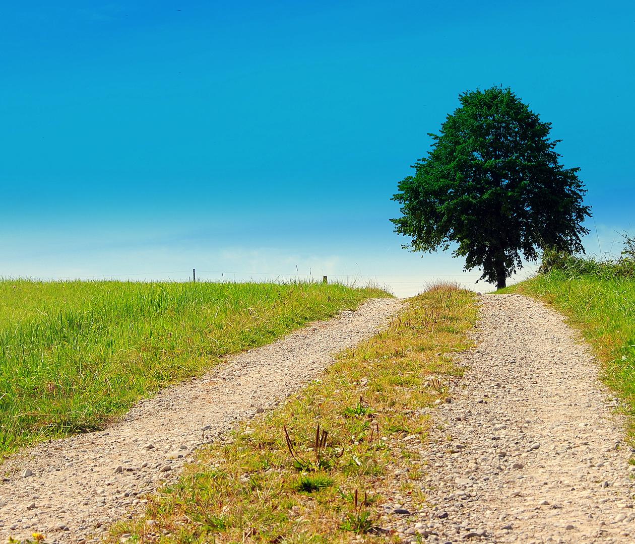 My way.......