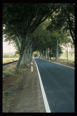 My way home ...