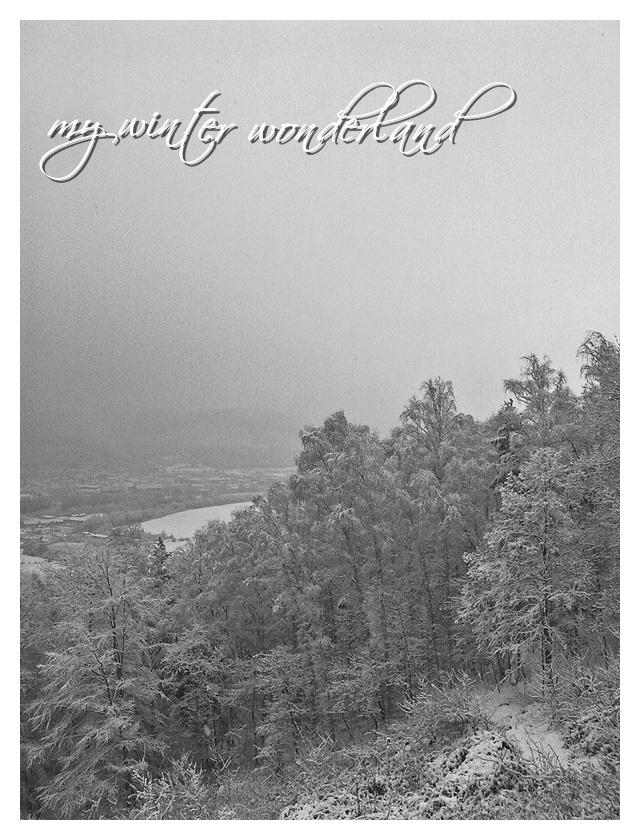 My Winter Wonderland
