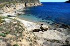Mykonos-St. Anna-Beach