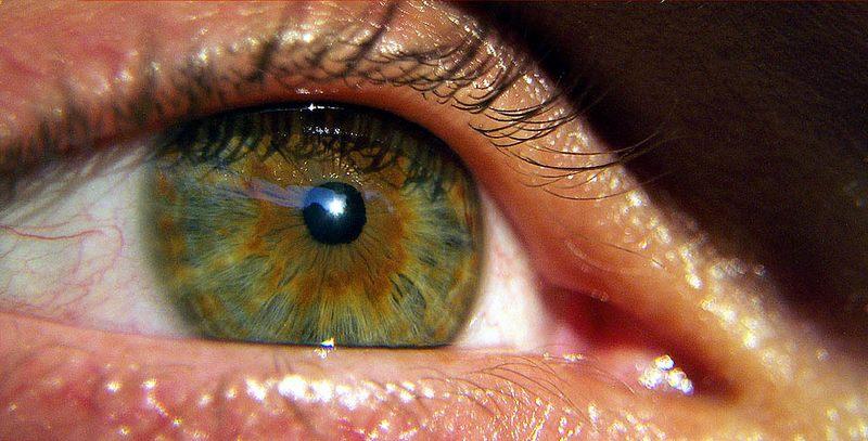 my.right.eye