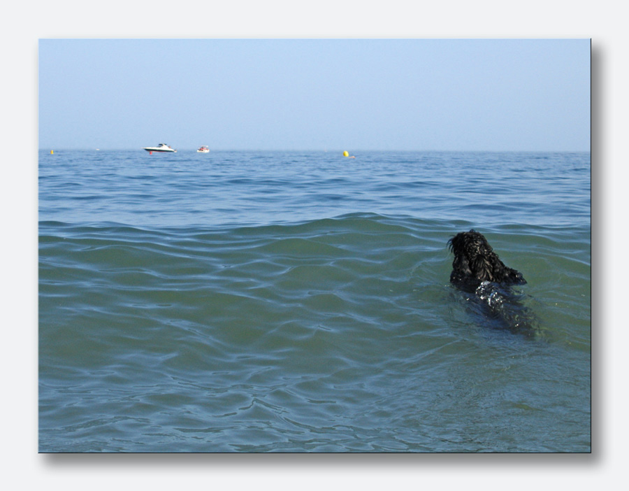 Myself und das Meer ...