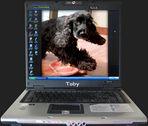 Myself und mein Desktop ... :-)