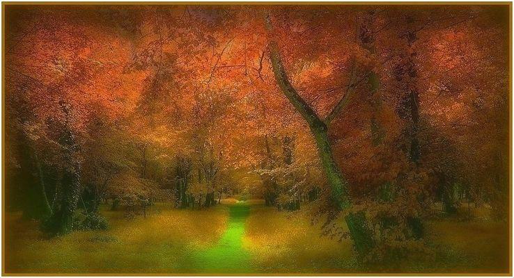 Mystères d'automne