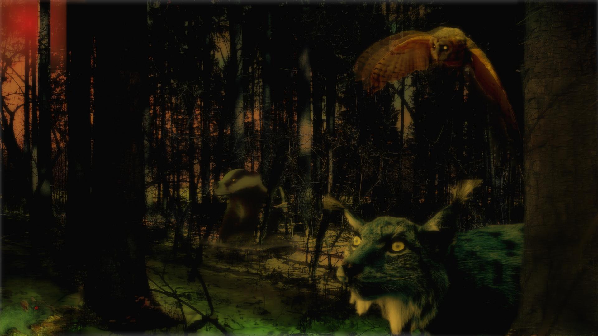 Mystery Wächter des Waldes
