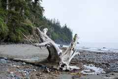 Mystic Beach 1